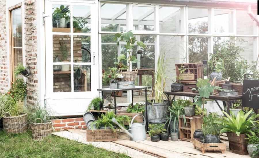 Pflanztöpfe vor einem Gartenhaus